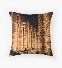 Following Robert Langdon Throw Pillow
