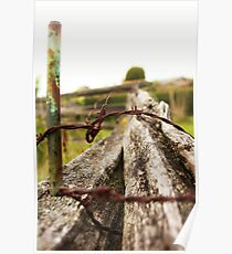 Fence: Stake, thorns and an old tree Poster