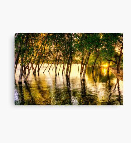 Tree Flood Canvas Print