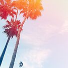 Palm Bright  by DivvyMag