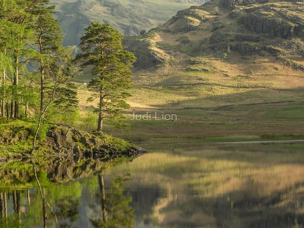 Morning at Blea Tarn by Judi Lion