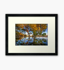 Sun High, Water Low Framed Print