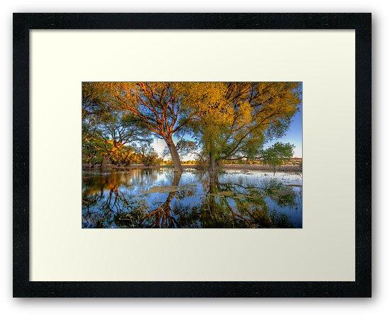 Sun High, Water Low by Bob Larson
