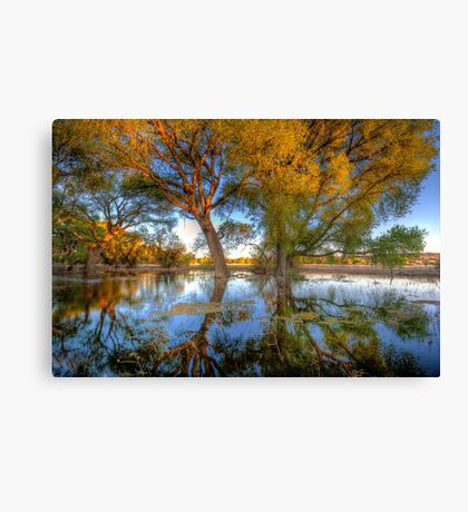 Sun High, Water Low Canvas Print