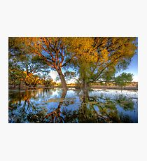 Sun High, Water Low Photographic Print