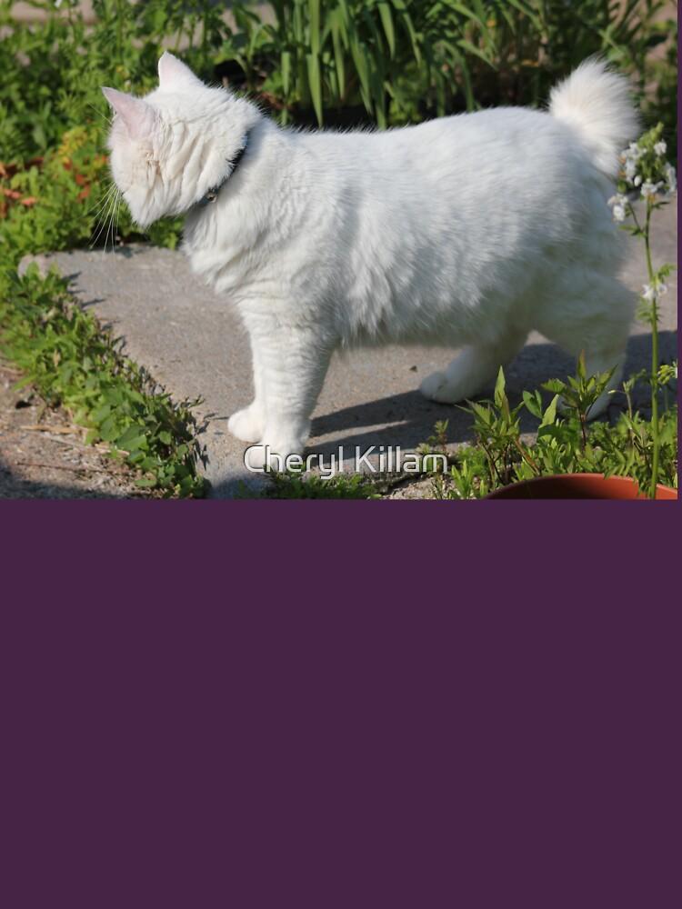 White Cat  by Violetentity