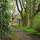 Woodland path and cottage by Sue Knowles