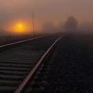 Misty Tracks by Kylie Moroney
