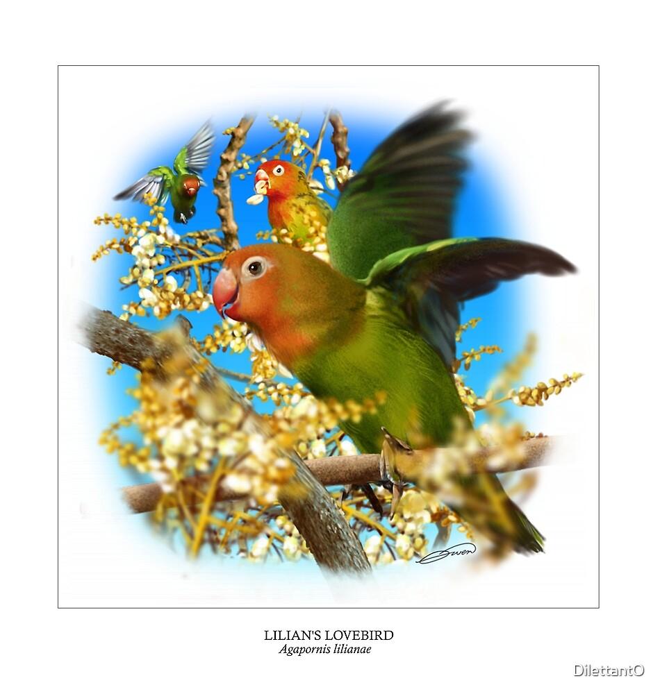LILIAN'S LOVEBIRD 5 (NOT A PHOTOGRAPH) by DilettantO