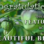 Beautiful Blur Feature Banner by Susana Weber
