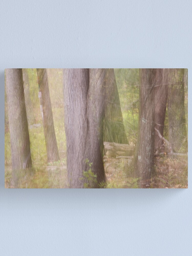 Alternate view of Ghostly Spring Forest Canvas Print