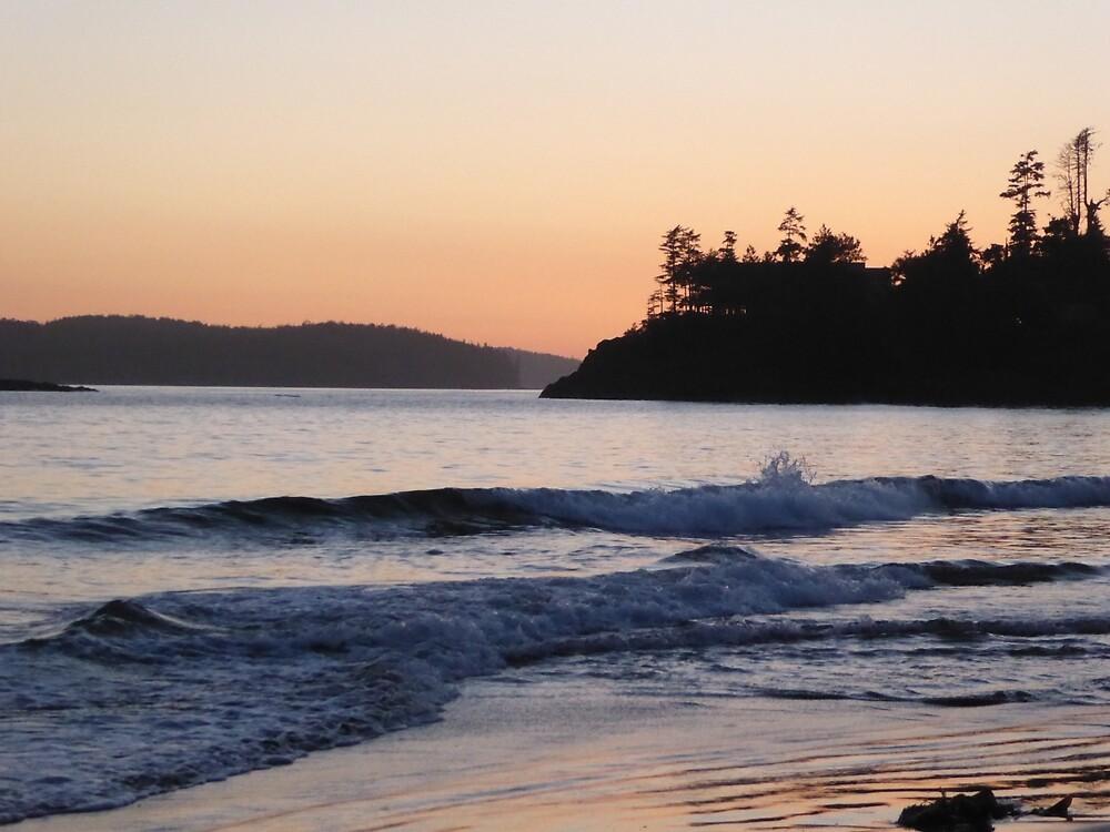 Beautiful Beach Sunset by pixiealice
