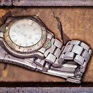 Forgotten Time... by friendlydragon