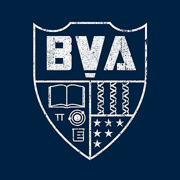 Brooklyn Visions Academy Wappen von huckblade