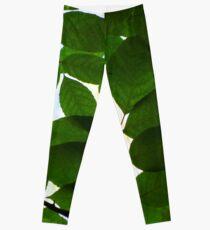 Natural Patterns  Leggings