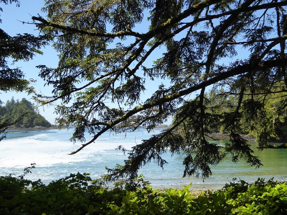 Branches and beaches by pixiealice