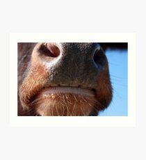 Whose Nose Art Print