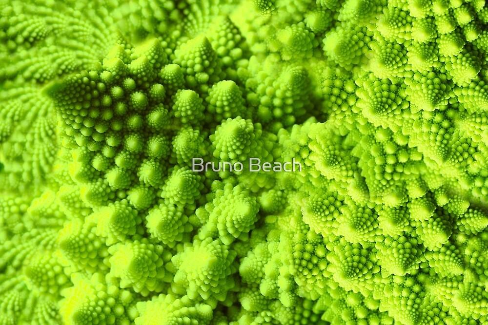 Romanesco broccoli  by Bruno Beach