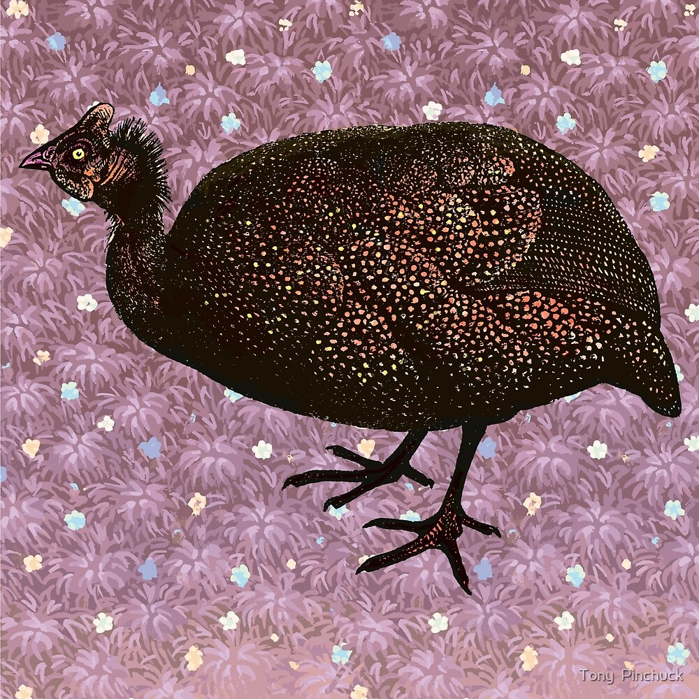 African Guinea Fowl Against Patterned Background by Pinchuck