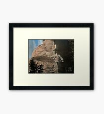 Fallen Rock- Willow Lake Framed Print