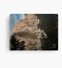 Fallen Rock- Willow Lake Canvas Print