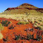 Pilbara Landscape by Harry Oldmeadow