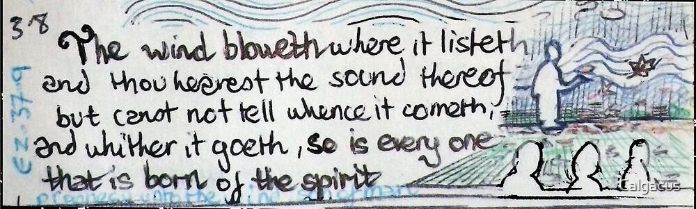 Born of the Spirit. by Calgacus