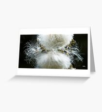 Seed Greeting Card