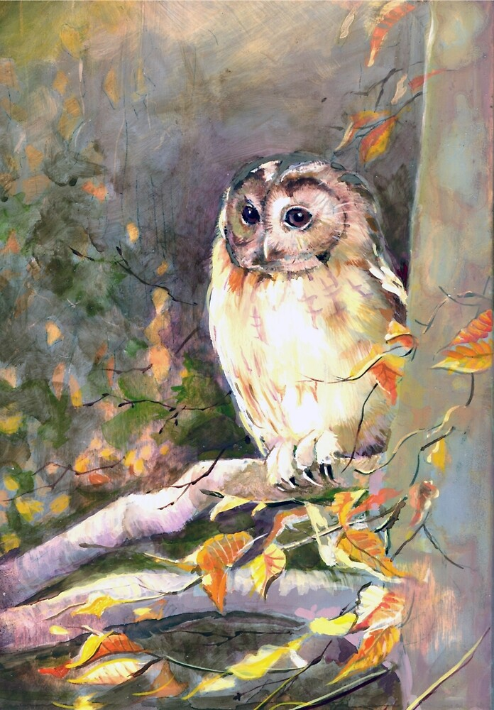 Tawny Owl in the Night by Penny Taylor- Beardow