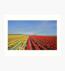 Op - art photography by Brown Sugar . 1 favoritings 762 views . Woooows !! so good !!! thanks ! Art Print