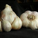 Naked garlic by Anna D'Accione