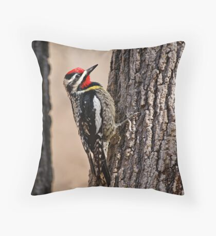 Yellow Bellied Sap-Sucker - Ottawa, Ontario Throw Pillow