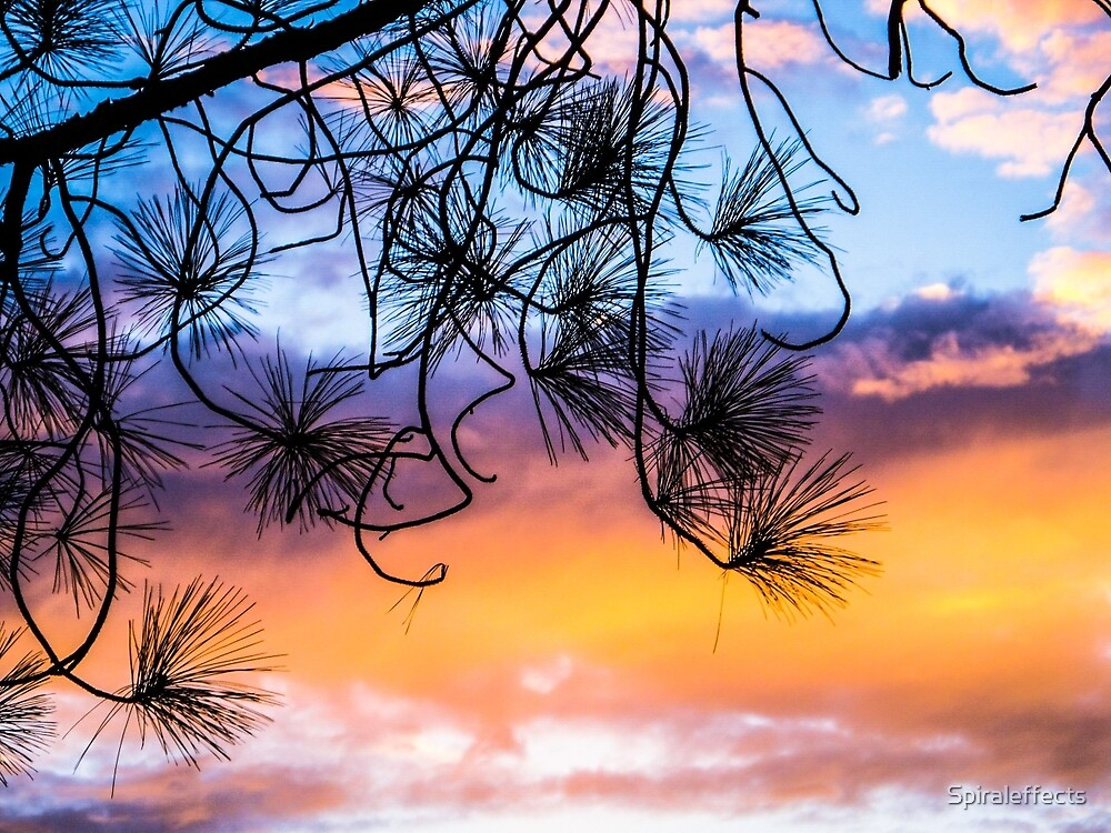 sunset 1 by Spiraleffects