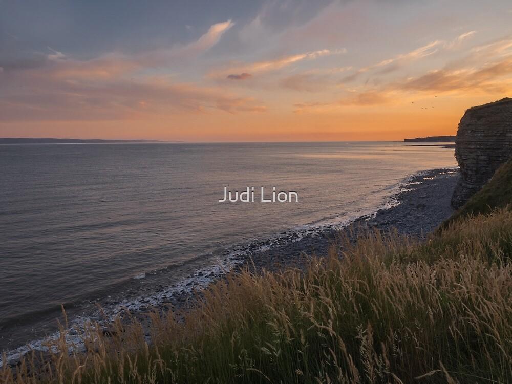 Sun setting over the Glamorgan Coast by Judi Lion