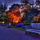 Lonely Benches by G. Brennan