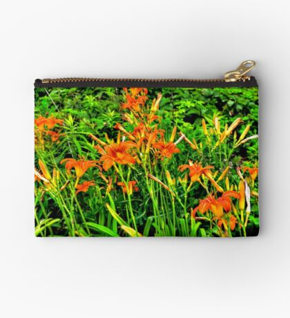 Tigers In Our Field Studio Pouch