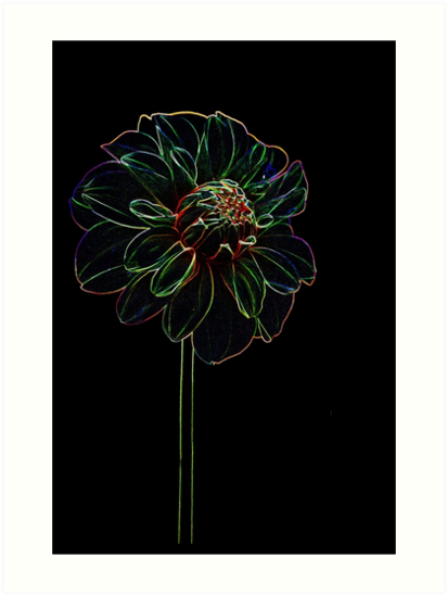 The Rainbow Flower - Glowing Colored FLower by verypeculiar