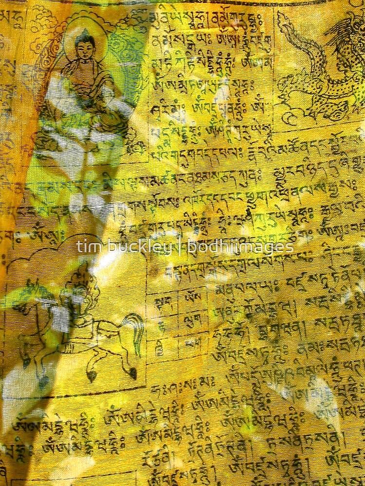 detail, tibetan prayer flag. sikkim by tim buckley | bodhiimages