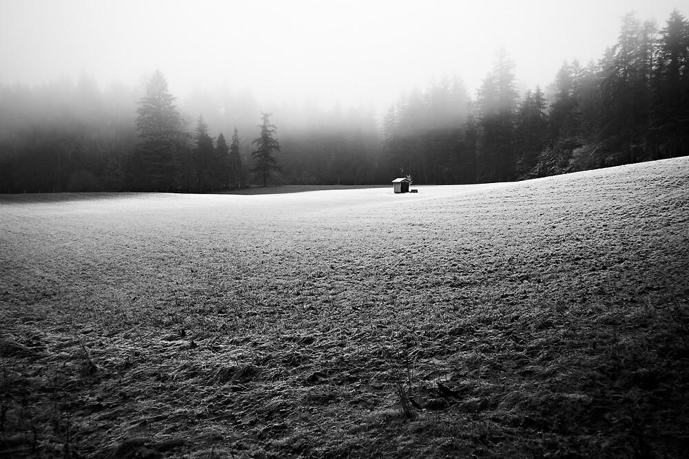 solitude by Bill vander Sluys