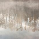 Misty Reflections by April Koehler