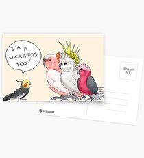 Cockatiel is a cockatoo too! Postcards