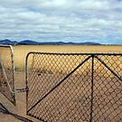 Gateway to the You Yangs by Bevellee