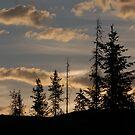 morning landscape by JimSanders