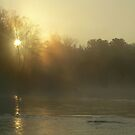 Foggy Mississippi river Sunrise by NiftyGaloot