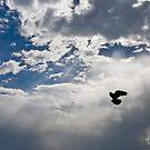 To the Heaven... by Viktoryia Vinnikava