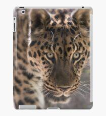 Leopard (Panthera pardus) iPad-Hülle & Skin