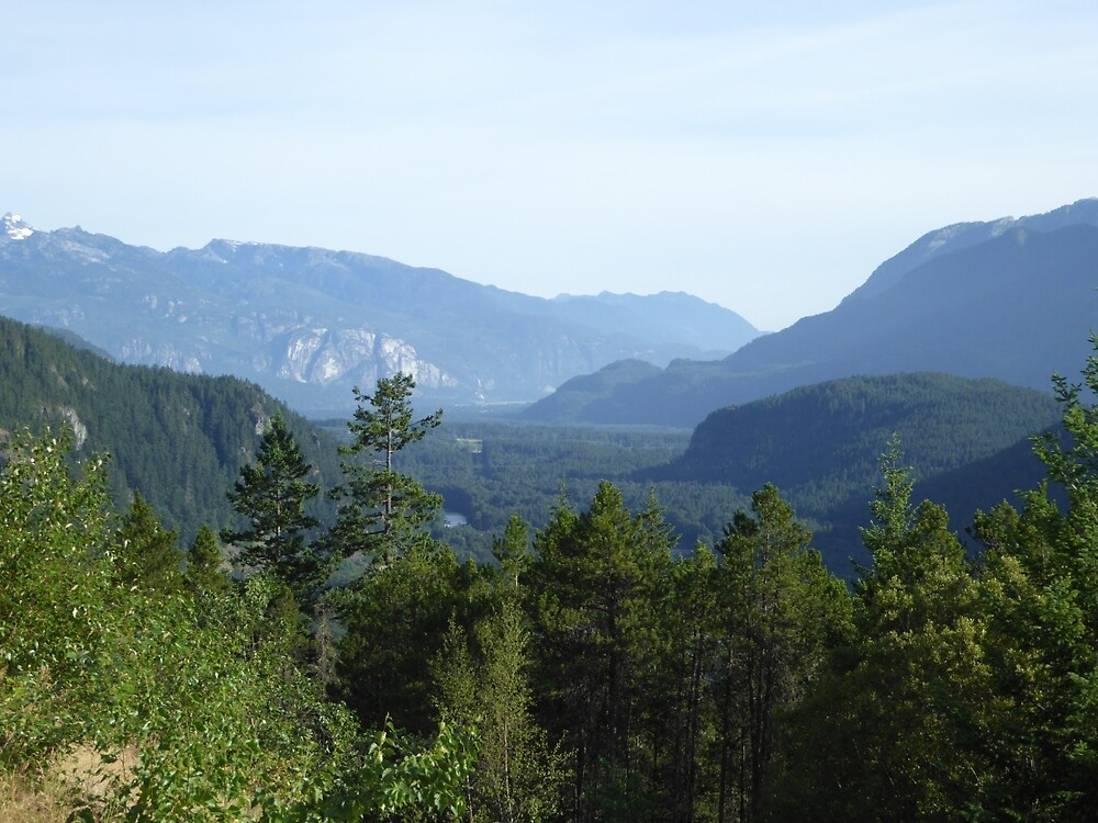 Trees and mountains by pixiealice