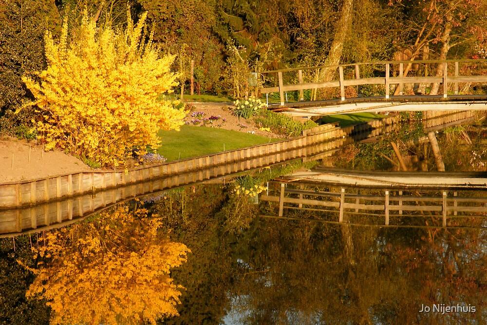 Spring Morning Reflections by Jo Nijenhuis