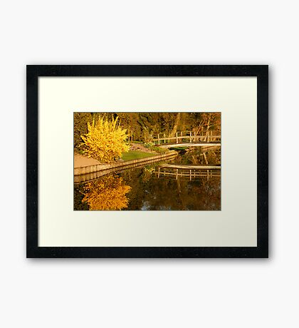 Spring Morning Reflections Framed Print