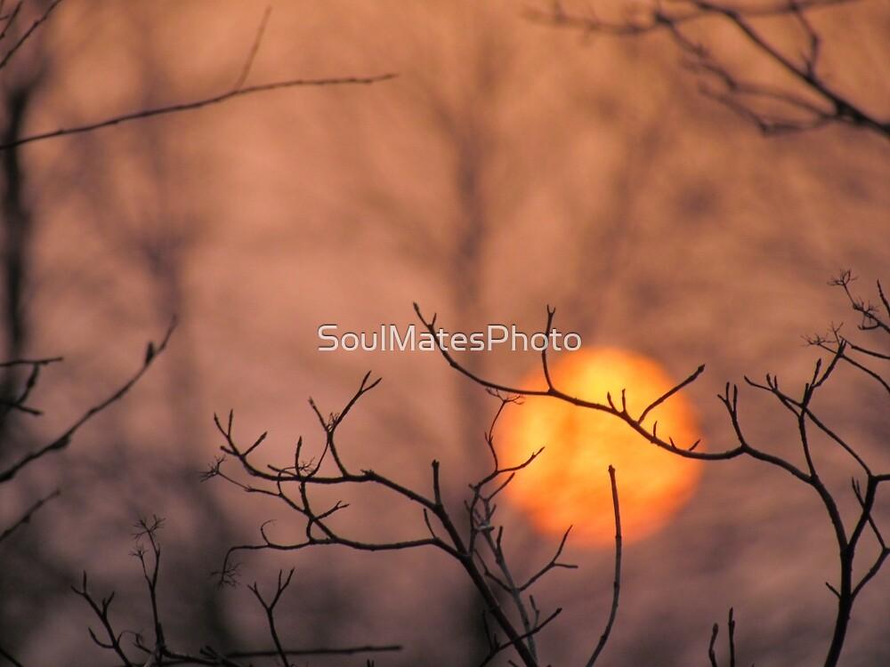 Sunset by SoulMatesPhoto